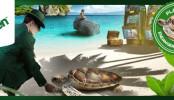 Pomozte Mr Green Casinu zachránit želvy hrou na automatech