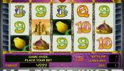 online automat Queen of Hearts zdarma