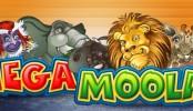 Progresivní jackpot Mega Moolah je za hranicí 7 milionů GBP