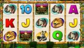 online hrací automat Jungle Bucks zdarma