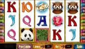 Double Panda online herní automat zdarma