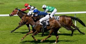 Online automat Sure Win - koňské dostihy