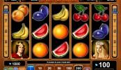 Obrázek automat Fruits Kingdomm