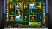 Hrací online casino automat Magic Forest