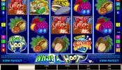 Herní automat What a Hoot online zdarma