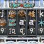 Herní casino automat Tiger vs. Bear zdarma
