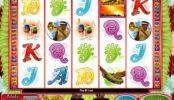 Výherní automat Samba Nights online zdarma