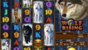 Herní casino automat Wolf Rising pro zábavu