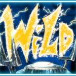 Wild symbol ze hry automatu Frankenslot's Monster online