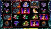 Miss Red casino automat pro zábavu