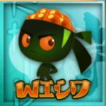 Wild symbol - automat Kobushi online bez registrace