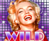 Wild symbol ze hry Marilyn Monroe
