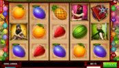 Obráze z automatové hry Ninja Fruits zdarma