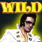 Wild symbol - Rock'n Slot
