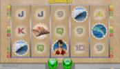 Online kasino automat Endless Summer bez vkladu