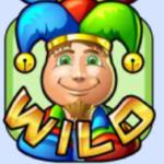Wild symbol - Random Joker casino automat online