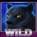 Wild symbol ze hry automatu Panther Moon online