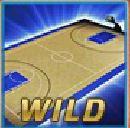 Wild symbol ze hry Basketball online