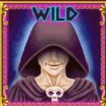 Wild symbol - výherní kasino automat Demi Gods