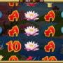 Obrázek ze hry automatu Dragon's Dynasty