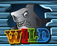 Wild symbol - Double Your Dought online automat