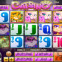 Obrázek ze hry automatu Catsino online
