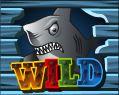 Symbol wild - Double Bubble online automat