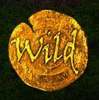 Wild symbol z automatové hry Notre Dame zdarma