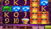 Herní casino automat Queen of Wands