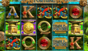 Obrázek ze hry automatu Temple of Fortune