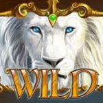 Symbol wild ze hry automatu White King online