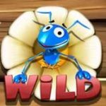 Symbol wild ze hry automatu Wild Antics online