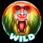 Wild symbol ze hry automatu 7 Monkeys