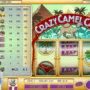Herní kasino stroj Crazy Camel Cash