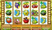 Herní kasino automat Freaky Fruits zdarma