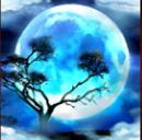 Scatter symbol z automatu Savanna Moon online