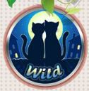 Wild symbol - Jour de l'Amour online automat zdarma