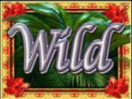 Wild symbol ze hry automatu White Falls