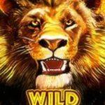 Wild symbol ze hry Hot Safari online