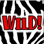 Symbol wild - Lady's Charms online automat