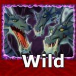 Wild symbol ze hry Win Wizards online