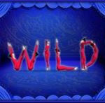 Wild symbom z automatu Cirque Chinois zdarma