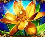 Online hrací automat Golden Acorn - scatter symbol