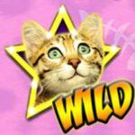 Symbol wild - hrací automat Meow Money zdarma