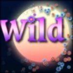 Wild symbol z automatu Night Jasmine