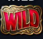 Symbol wild - Online automat bez registrace Wild Rodeo