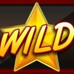 Wild symbol z online automatu 27 Hot Lines Deluxe