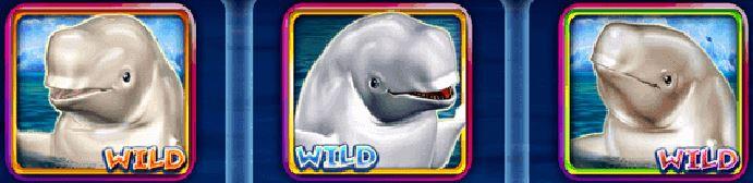 Wild symbol z online automatu Jolly Beluga Whales