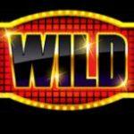 Wild symbol z hracího automatu Wild Times