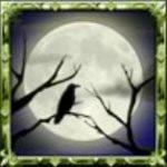 Symbol scatter z online automatu Blood Lore: Vampire Clan